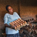 Prossy Sekasi is a Community Livestock Promoter (CLP) in Uganda. Trained by BRAC, she now teaches members of her community. With a BRAC loan, she bought 500 chickens and runs her own small business.
